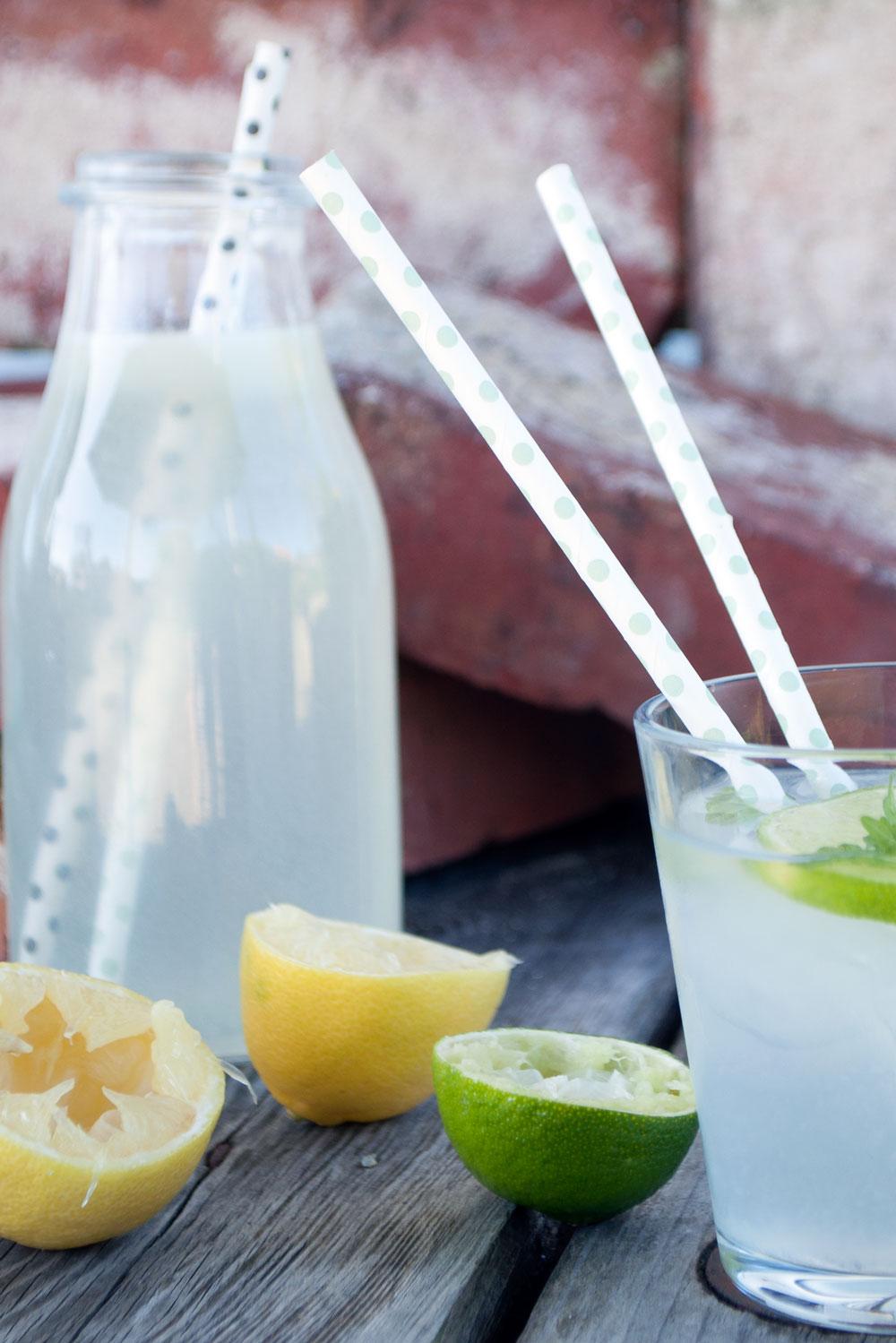 citron-limonade-87-small