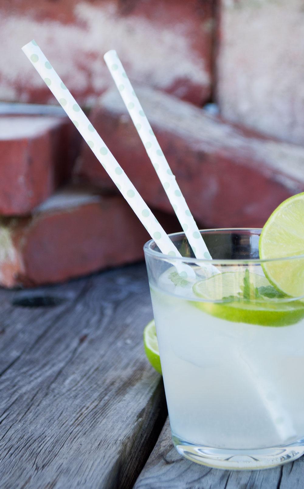 citron-limonade-91-small