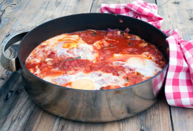tomatsovs-aeg-spejlaeg