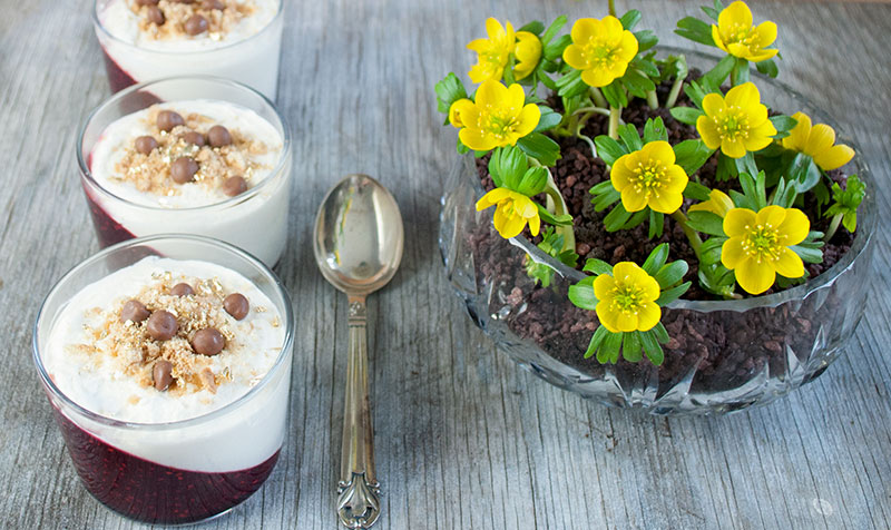 ostekage-dessert-hindbaer_10