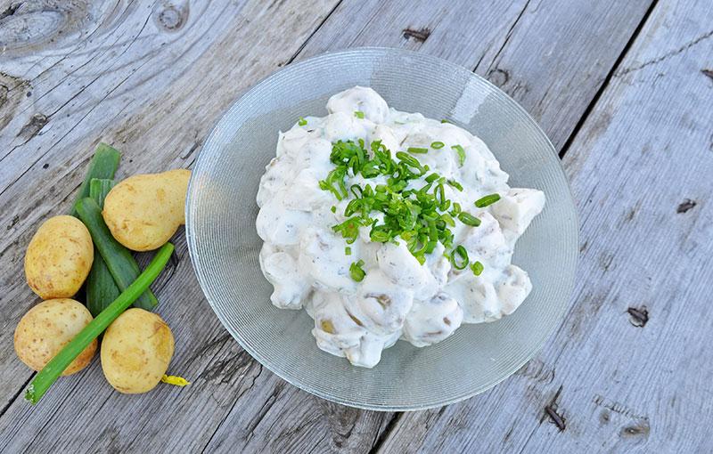 kartoffelsalat-kold-
