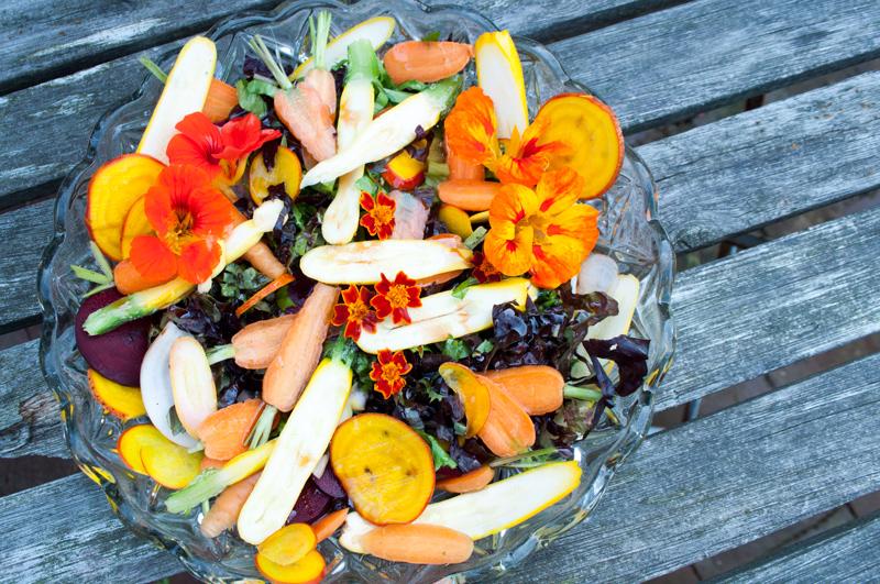 Smuk-salat-beder-gulerødder-04