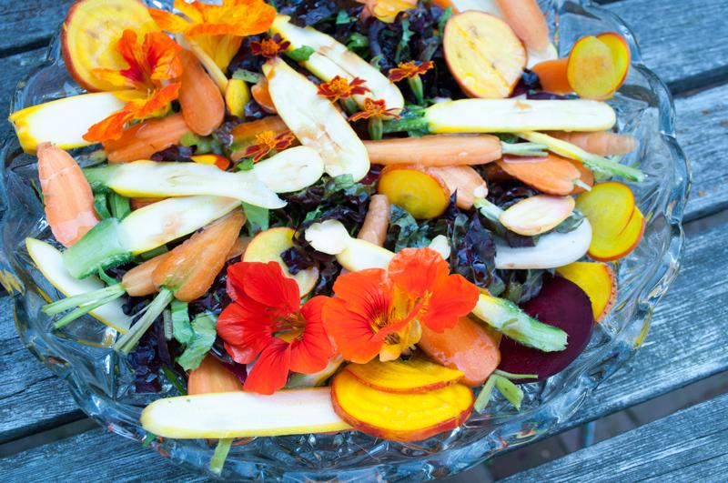 Smuk-salat-beder-gulerødder-06