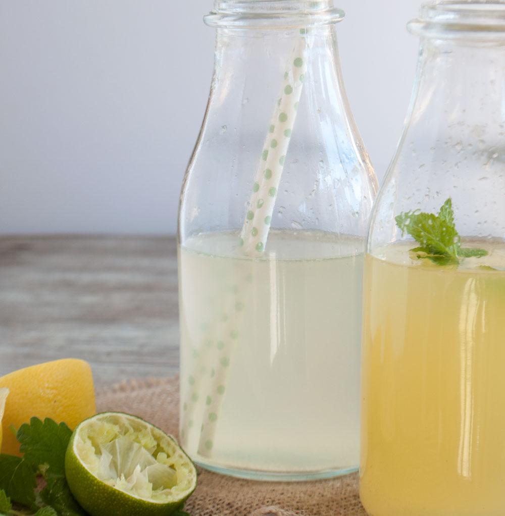 citron-limonade-116-small