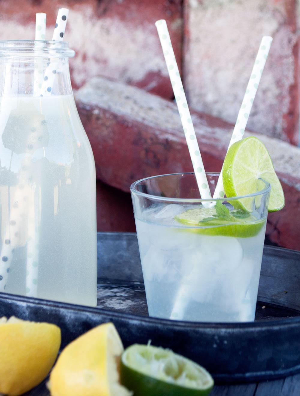 Lemonade til tørsten