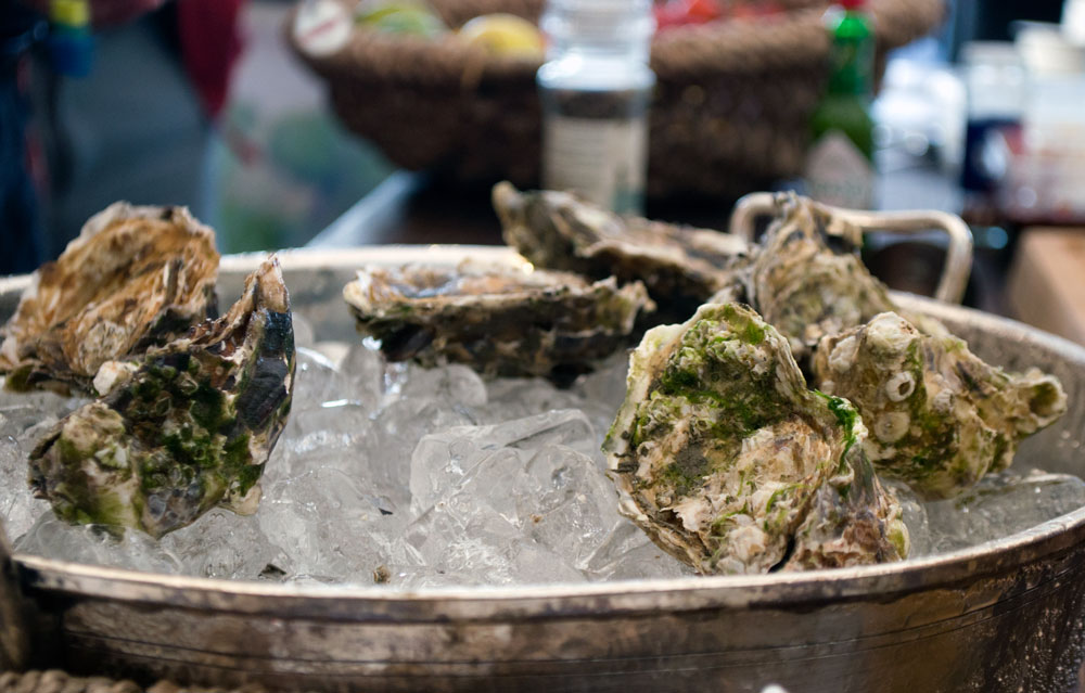 fano-oysters-95-2