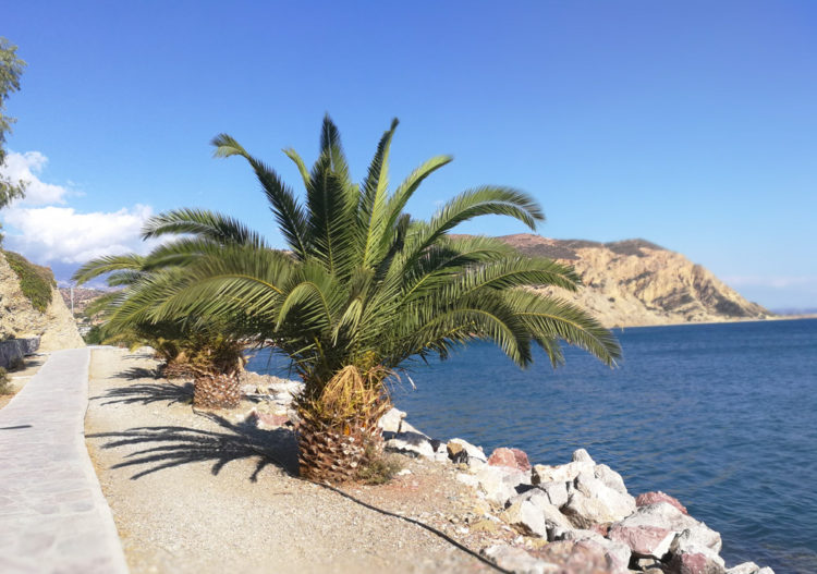 Kreta – fra Iráklion til Rethymno